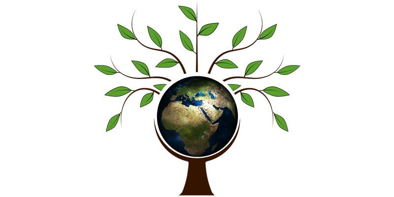 ecodiseño y biomasa