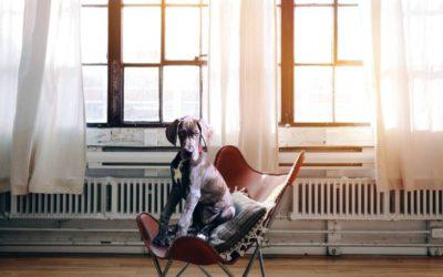 ¿Vuestra comunidad de propietarios tiene calefacción central? Es momento de hacer algunas mejoras