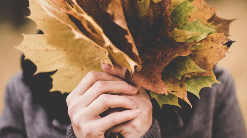 Consejos de climatización para lograr el máximo confort en tu vivienda  durante el otoño
