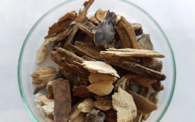 ¿Cuándo conviene instalar calefacción de biomasa?